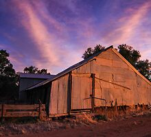 Woolshed at Sunset by Laura O'Dwyer