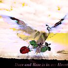 The Dove and The Rose in my Heart by HeklaHekla