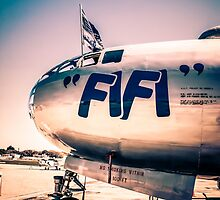 FiFi at Sunset by chris-csfotobiz
