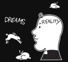 Dreams/Reality by cragnoters