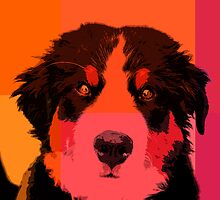 Bernese Mountain Dog in Orange by TheJill