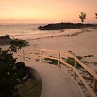 Beach pathway by triciamary