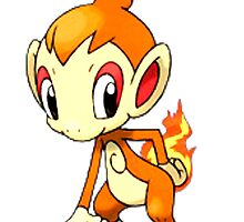 Chimchar by linwatchorn