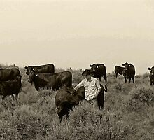 Tending the cows  by hollihogemark