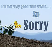 So Sorry Card With Daffodils by Jean Gregory  Evans