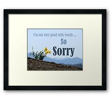 So Sorry Card With Daffodils Framed Print