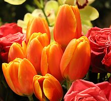 Orange Tulips and Red Roses by happychic