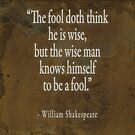 The fool doth think he is wise by Peter Ciccariello