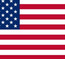 Distressed U.S. Flag & Eagle World War Champs Sticker