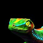 Gecko Lizard Close up 3d digital Art by BluedarkArt