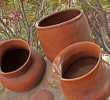 Ceramic Pots by rhamm