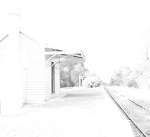 Old Railway Station by jimrac
