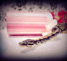 Princess Ball Python  by Skymall007