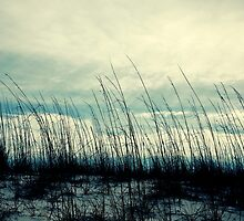 Panama City Beach by reecejustin