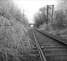 Winterland/ Train Tracks...CANADIAN CULTURE CAPTURED by inspiREDmaple