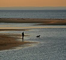 Sunset Dog Walk by Gilda Axelrod
