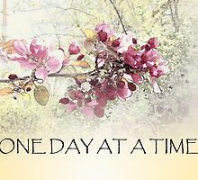 One Day at a Time Pink Blossoms by serenitygifts