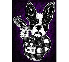 French Bulldog Gangster Photographic Print