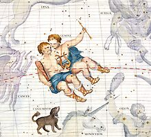 Constellation of Gemini with Canis Minor by Bridgeman Art Library