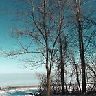 Frozen Lake Erie At Old Woman Creek by MSRowe Art and Design
