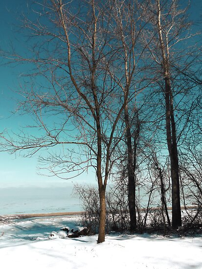 Frozen Lake Erie At Old Woman Creek by SRowe Art
