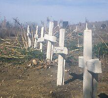 Crosses  by shutterbug941