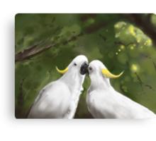 Cockatoo Love  Canvas Print