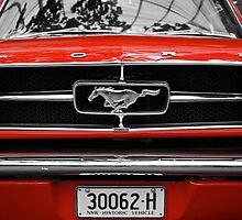 Mustang Sally by D-GaP