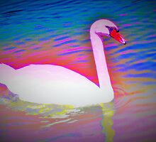 Surreal swan by ♥⊱ B. Randi Bailey