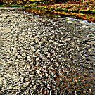 Pebble Waters by shelleybabe2