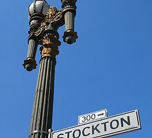 Stockton by Talbotfox