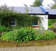 An Irish Cottage by Fara