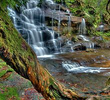 Upper Somersby Falls, Central Coast, New South Wales by Erik Schlogl