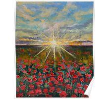 Starlight Poppies Poster