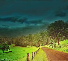 Long and Winding Road 2 by wallarooimages