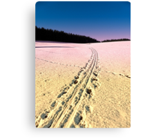 Cross country skiing | winter wonderland | landscape photography Canvas Print