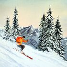 Skiing - The Clear Leader by bill holkham