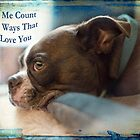 Let Me Count The Ways That I Love You by Susan Werby
