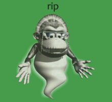 rip Wrinkly Kong by GOHT