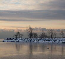 Pale, Still Morning on Lake Ontario by Georgia Mizuleva