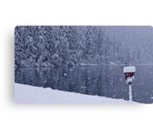 Heavy snowfall at the lake Canvas Print