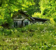 Old house by Mai Shisa