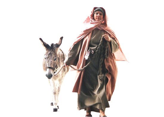 Hebrew woman with Donkey - The Jerusalem Entry by Rick Short