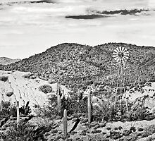 Sonoran Desert and the Windmill by Lee Craig
