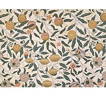 Pomegranate design for wallpaper Photographic Print