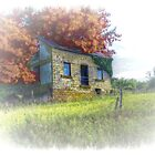 Cottage on the Hill by wiscbackroadz
