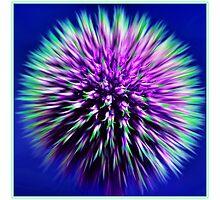 Zoom Burst by Karosh