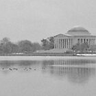 Jefferson Memorial - Washington D.C.  by Matsumoto