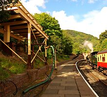 Llangollen Station by kalaryder