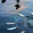 """Flip-flop Flotilla"" by Sandra Chung"